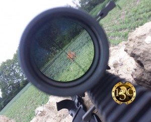 weaver deer scope 2
